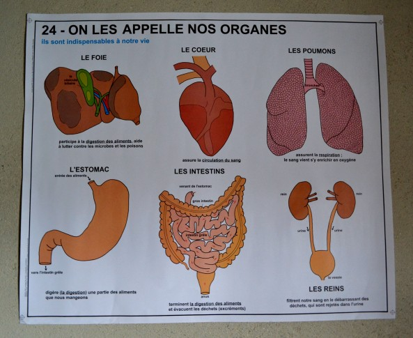 French Health Poster – Vintro